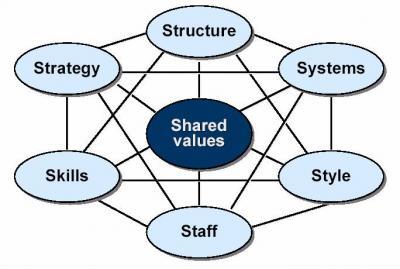 7 - S Framework (McKinsey)